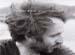 15 песен Венсана Делерма